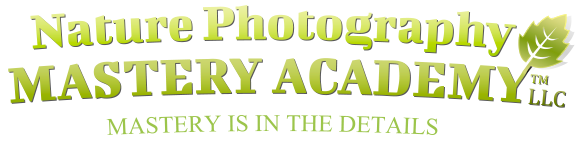 logo-nature-photography-mastery-academy-vector-no-margin – Nature Photography Mastery Academy