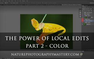 local-edits-tutorial-color-thumb-1