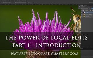 local-edits-tutorial-intro-thumb-1