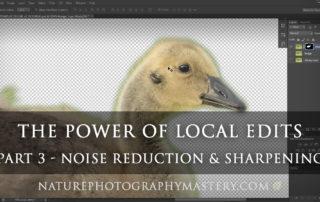 local-edits-tutorial-noise-reduc-sharpen-thumb-2