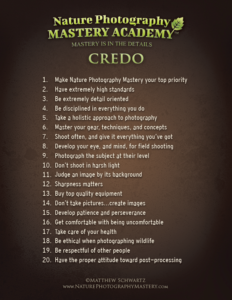 The Nature Photography Mastery Academy Credo Preview Thumbnail