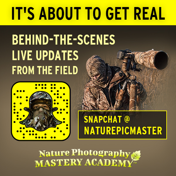 Add me on Snapchat @ naturepicmaster to virtually follow me in the field on nature photography shoots