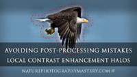 Avoiding Post-Processing Mistakes - Local Contrast Enhancement Halos