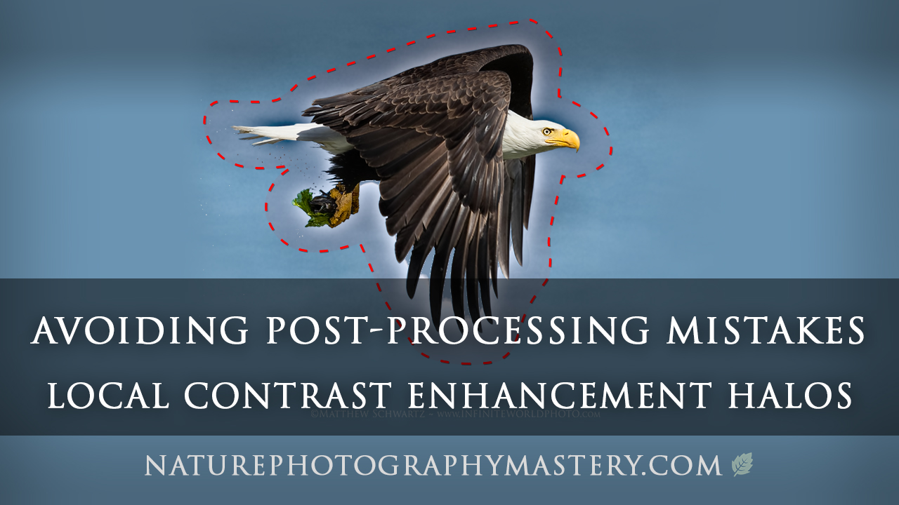 Avoiding Post-Processing Mistakes - Local Contrast Enhancement Halos